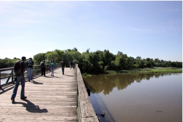 Bowser commits $4.7 million to long-neglected islands in Anacostia River