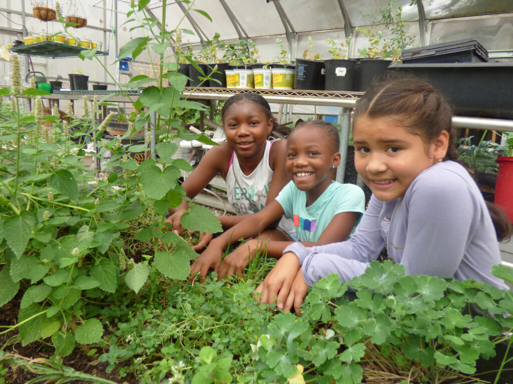 Living Classroom Applies for MSDE's 21st Century Community Learning Centers